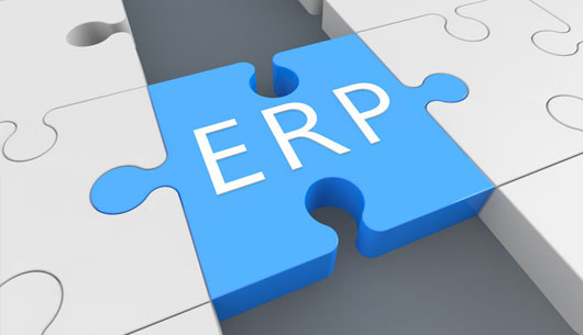 Integración con ERP / CRM